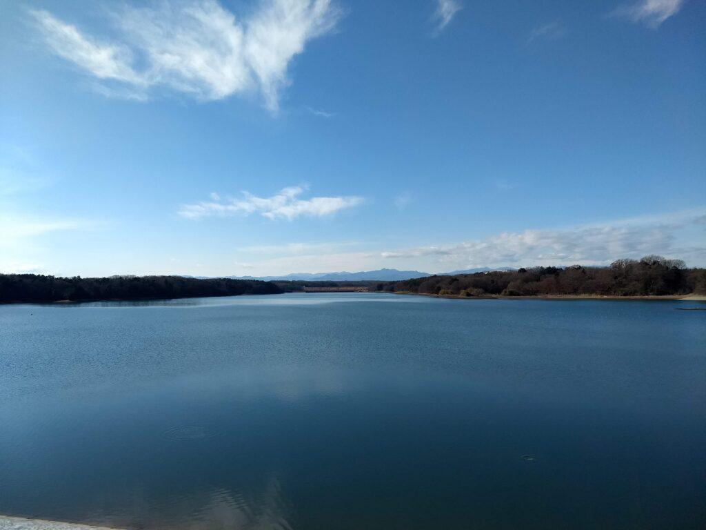 多摩湖 中央